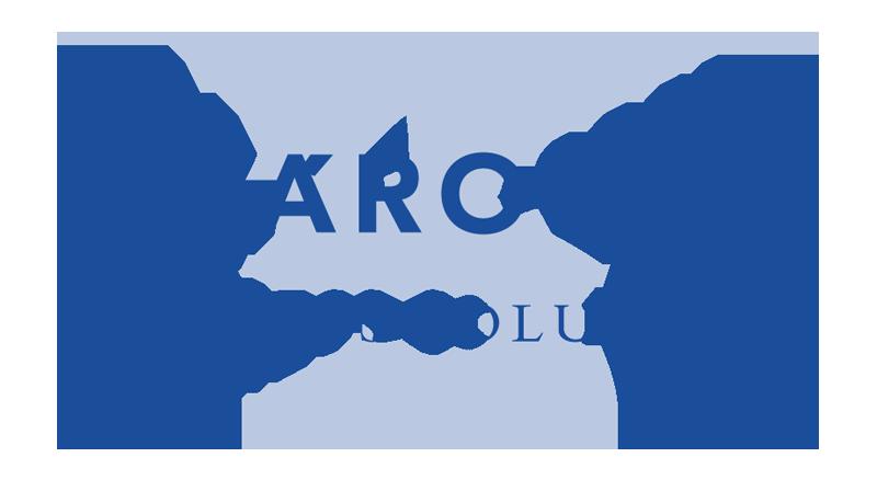 Karolyi_logo_final_color